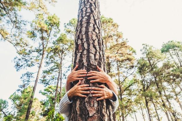 Mensen en liefde voor het concept van de natuuromgeving met handen die een stamboom in het bos knuffelen - stop ontbossing en red de aarde-planeetmissie - viering van de aardedag