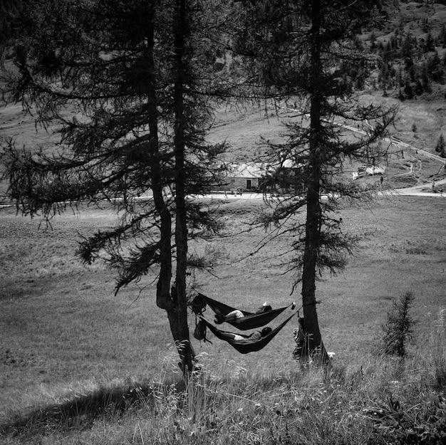 Mensen genieten van de natuur in hangmatten