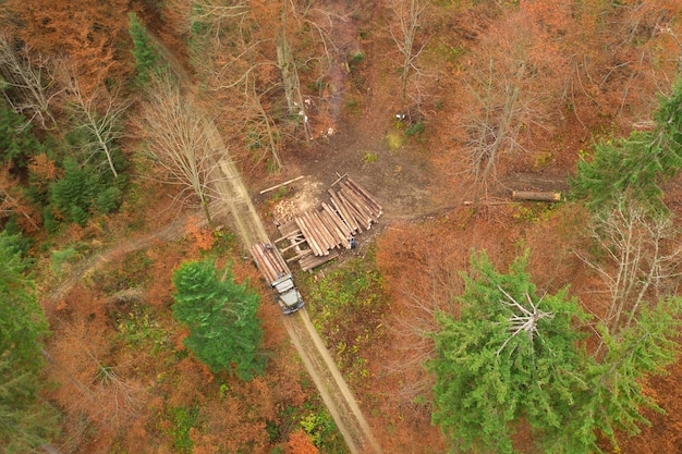 Mensen laden boomstammen op een vrachtwagen