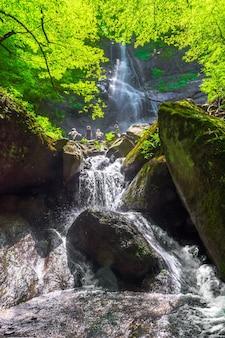 Mensen op prachtige waterval in het groene bos
