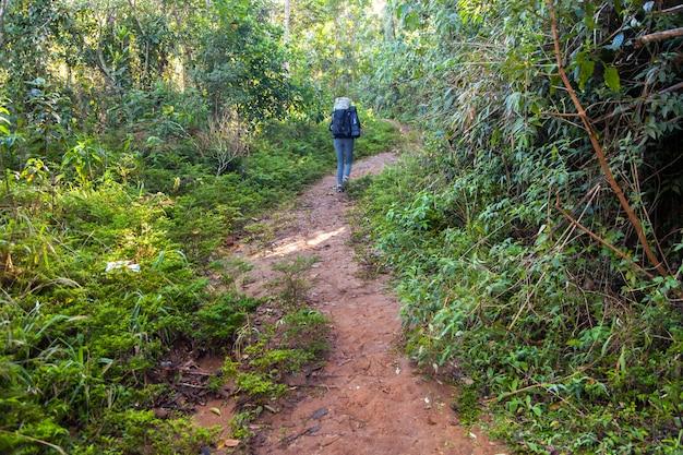 Mensen op trekking trail in het regenwoud - brazilië