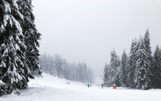 Mensen skiën bergafwaarts, wintersamenstelling, recreatie, berglandschap