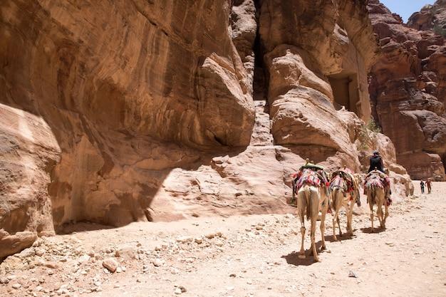 Mensen voor petra, jordanië.