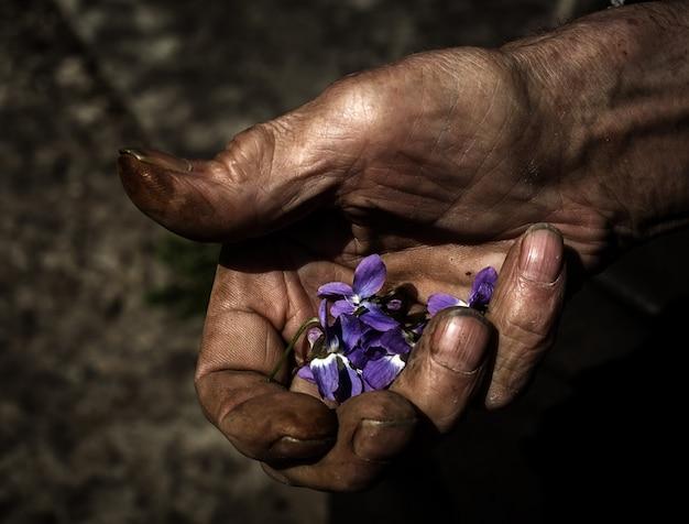 Mensenhand die jonge plant houden