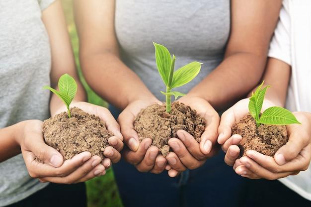 Mensenhanden die jonge plant houden en bevindende groep. voeden milieuconcept