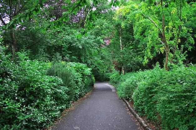 Merrion square park, dublin, ierland