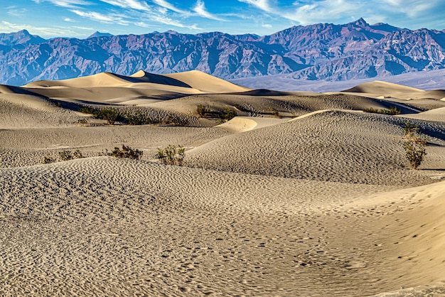 Mesquite flat sand dunes in death valley national park in californië, vs.