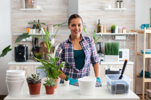 Met behulp van vruchtbare grond met een schop, witte keramische pot en huisbloem, planten, voorbereid voor herbeplanting voor huisdecoratie