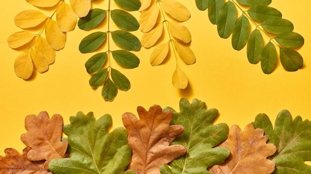 Met de hand gemaakte decoratieve samenstelling als achtergrond van de herfstbladeren