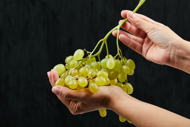 Met een tros witte druiven op zwarte achtergrond. hoge kwaliteit foto