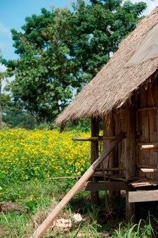Met stro bedekt dakpannenhuis op een gebied, chiang dao, chiang mai province, thailand