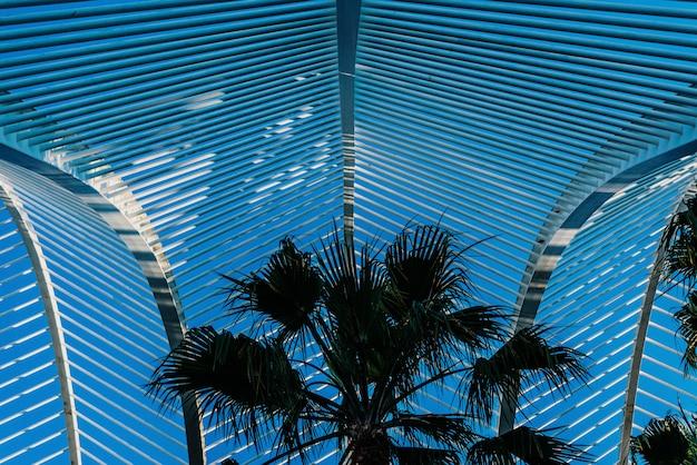 Metalen structuur die een buitentuin van mediterrane palmen bedekt.