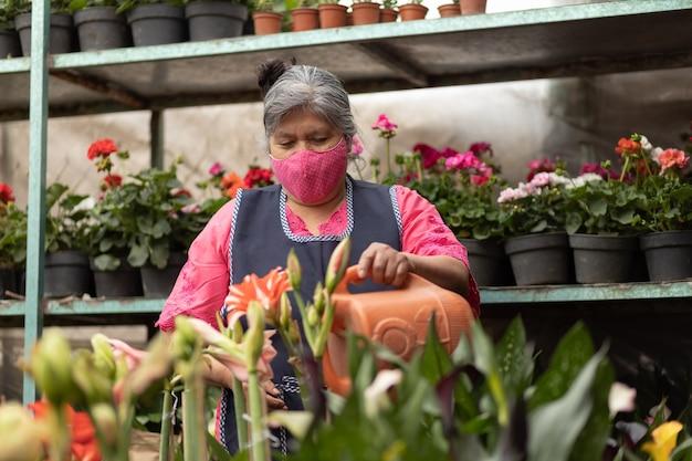 Mexicaanse vrouw die planten water geeft in kwekerij xochimilco, mexico, met gezichtsmasker, nieuw normaal