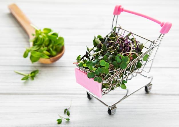 Micro greens in winkelwagen op houten achtergrond. verschillende soorten microgreens te koop. gezond eten concept