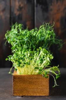 Microgreen erwtenspruiten op oude houten tafel. vintage-stijl. veganistisch en gezond eten concept. groeiende spruiten.
