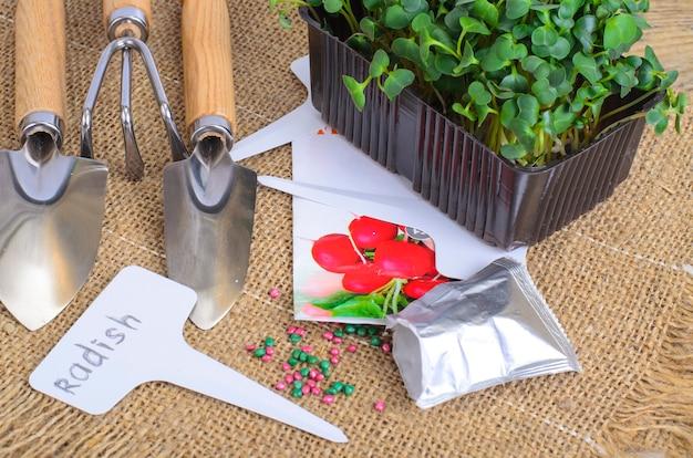 Microgreens planten. pak met radijszaadjes. tuingereedschap voor het planten van planten. studio foto