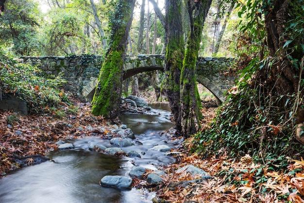 Middeleeuwse venetiaanse brug in cyprus