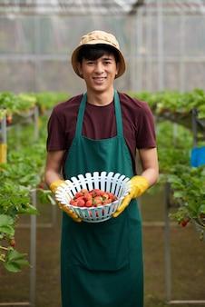 Middelgroot schot van mannelijke landbouwer die camera onder ogen zien en een bowlfull van aardbeien houden