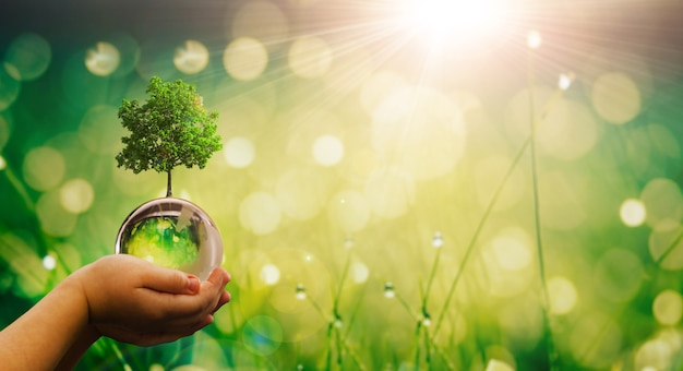 Milieu sparen schone planeet ecologie concept kind handen met crystal earth globe