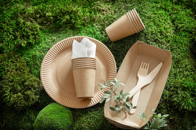 Milieuvriendelijk, stijlvol, wegwerpbaar, handig, mooi recyclebaar serviesgoed.