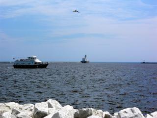 Milwaukee harborfront, vogel