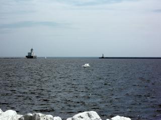 Milwaukee harborfront, vuurtoren, water