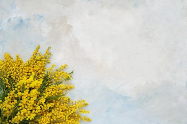 Mimosa bloemen boeket op lichte achtergrond kopie ruimte bovenaanzicht
