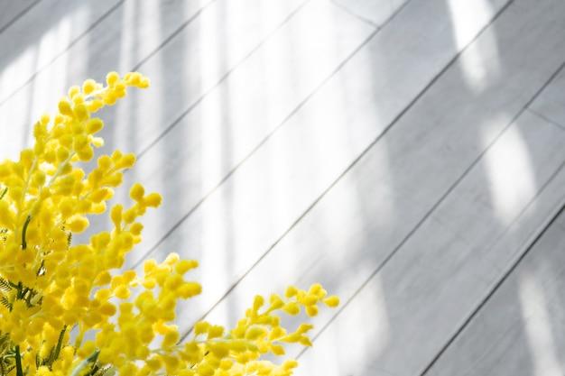 Mimosa takken op de achtergrond van een houten witte vloer in de stralen van de zon