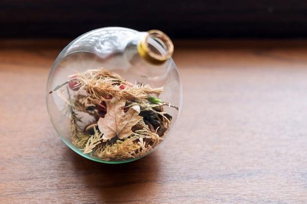 Mini succulente tuin in glazen terrarium op houten vensterbank, vetplanten met zand en rotsen in glazen doos, huisdecoratie-elementen. Premium Foto