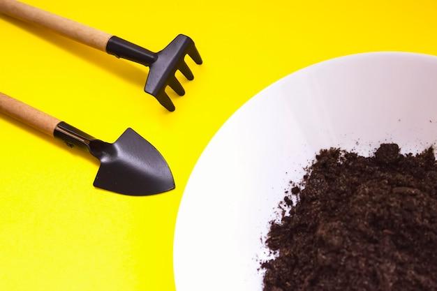 Miniatuur tuingereedschap, plaat met grond op gele achtergrond. thuis tuinieren, groeiend stapconcept. plant kieming en groei.