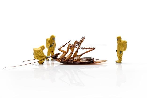 Miniatuurmensen met dode kakkerlak die op een witte achtergrond wordt geïsoleerd.