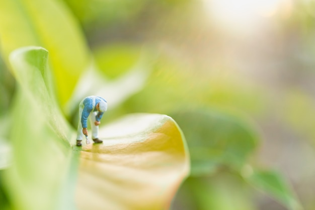 Miniatuurmensen: schilders kleuren op groen blad met wazig groen