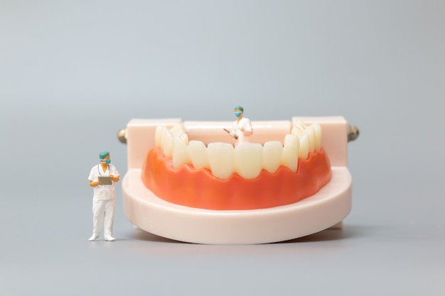Miniatuurmensen: tandarts die menselijke tanden met tandvlees en glazuur herstelt, gezondheids- en medisch concept