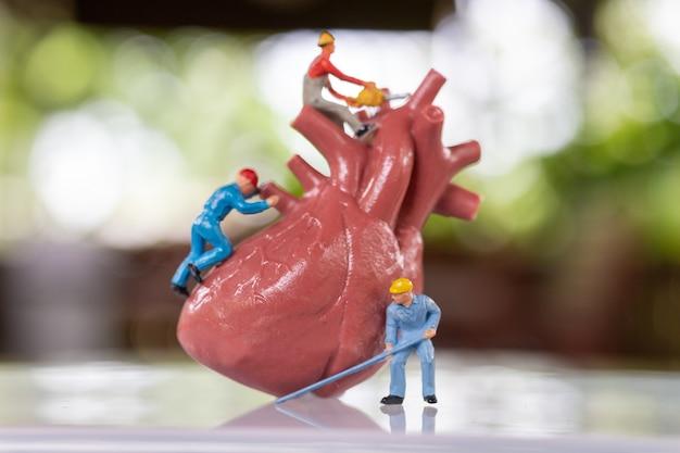 Miniatuurmensen werknemersteam onderzoekt het hart, luistert naar een hartslag en stelt een diagnose. behandeling en controle van het hartconcept Premium Foto