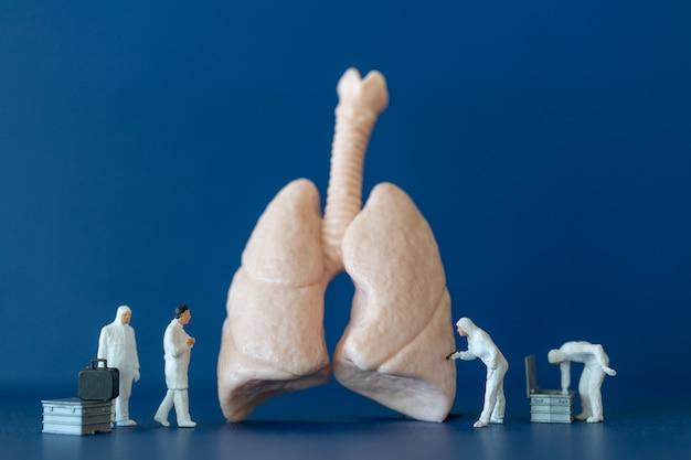 Miniatuurmensen, wetenschapper die observeert en bespreekt over menselijke longen, medisch zorgconcept.