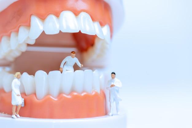 Miniatuurtandartsen die met tandvlees observeren en over menselijke tanden bespreken