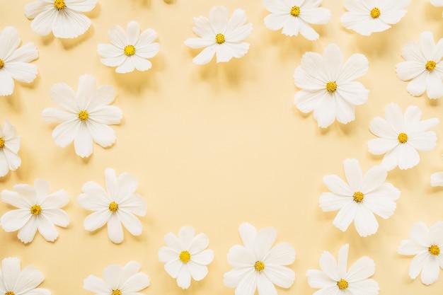 Minimaal gestileerd concept. krans gemaakt van witte margriet kamille bloemen op lichtgeel