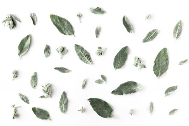 Minimaal patroon met bloemen, takken, bladeren en bloemblaadjes