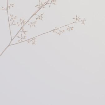 Minimale botanische achtergrond en behang