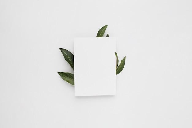 Minimale compositie met een blanco papier met groene bladeren, bovenaanzicht