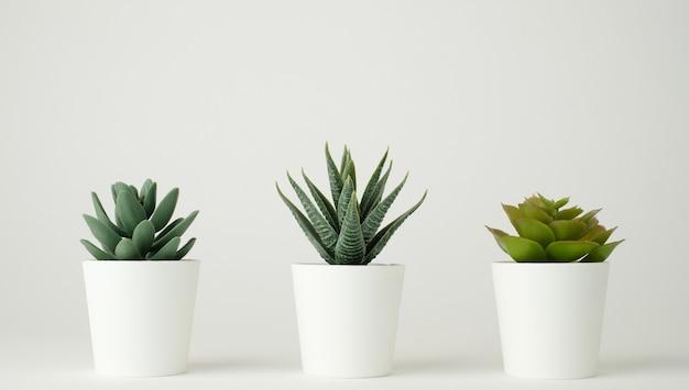 Minimale plantenpot voor decoratie en mock-up.