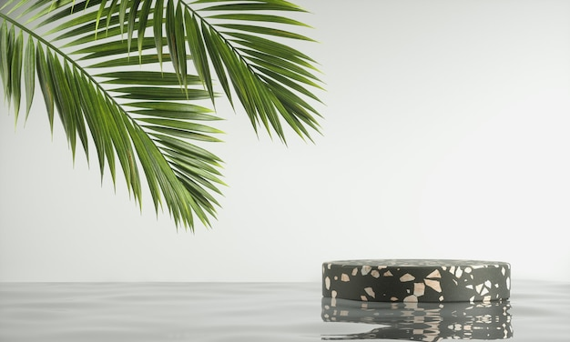 Minimale platform zwarte terrazzo steen op waterrimpeling met palmblad en witte achtergrond 3d render