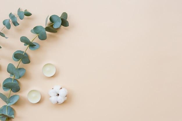 Minimale samenstelling van de spabehandeling. witte aromakaarsen, katoenbol en eucalyptusbladeren op lichte achtergrond. plat leggen, ruimte kopiëren, bovenaanzicht. vrouwelijke ontspannen sfeer.