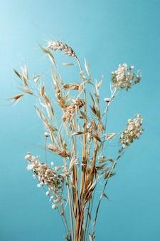 Minimale samenstelling van natuurlijke plant op een monochrome achtergrond