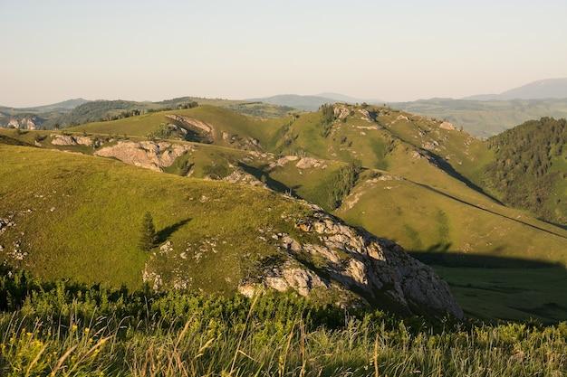 Minimalistisch landschap met rots en één boom op heuvel op achtergrond van blauwe hemel.