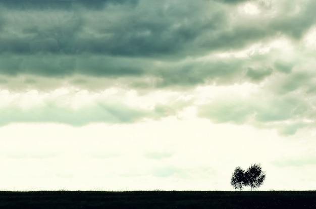Minimalistisch silhouet met enkele boom.