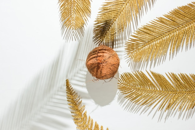 Minimalistisch tropisch stilleven. kokosnoot met gouden palmbladeren, schaduw op witte achtergrond. mode concept.