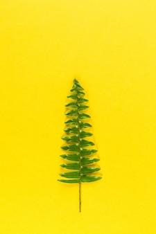Minimalistische kerstboom op gele pastel trendy achtergrond