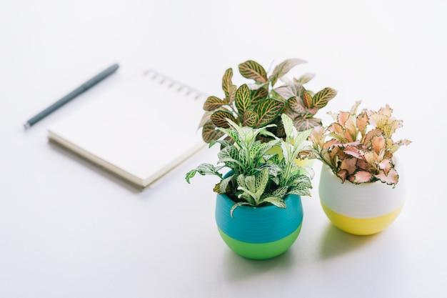 Minimalistische levensstijl, concept voor creativiteit