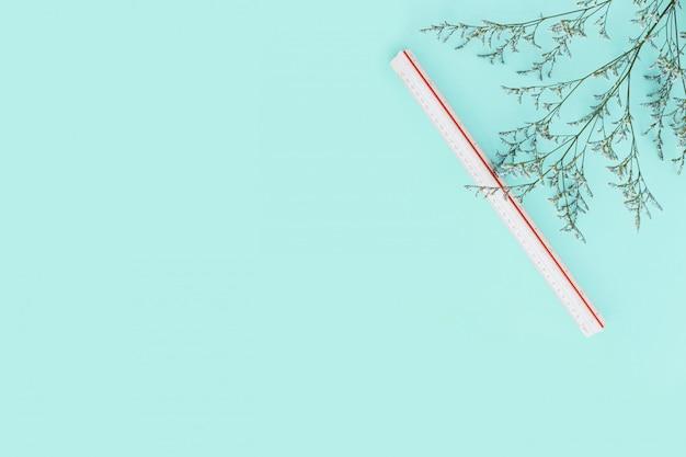 Mintgroene kleurenachtergrond met bloemtakken en schaalheerser aan de rechterkant. architect en ontwerperachtergrond met exemplaarruimte.